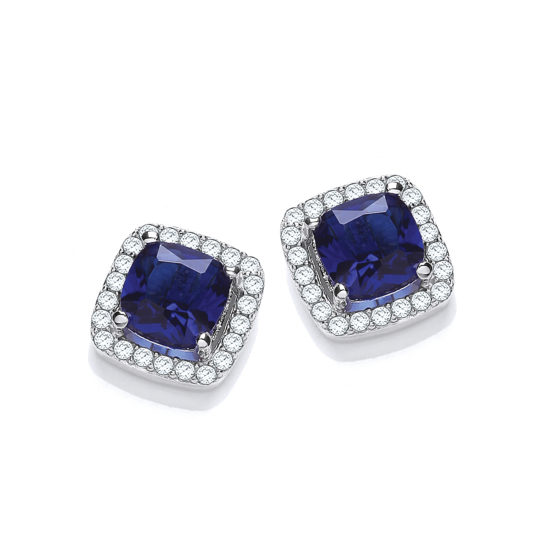 Micro Pave' Blue Pricess Cut Cz Stud Earrings